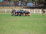 2016 Ladies Round 3 vs Waverly at Campbelltown Sat 16 April_10