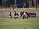 2016 Ladies Round 3 vs Waverly at Campbelltown Sat 16 April_20
