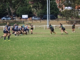 2016 Ladies Round 3 vs Waverly at Campbelltown Sat 16 April_2