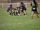 2016 Ladies Round 3 vs Waverly at Campbelltown Sat 16 April_35