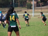 2016 Ladies Round 3 vs Waverly at Campbelltown Sat 16 April_46