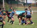 2016 Ladies Round 3 vs Waverly at Campbelltown Sat 16 April_51