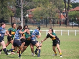 2016 Ladies Round 3 vs Waverly at Campbelltown Sat 16 April_52