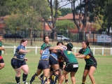 2016 Ladies Round 3 vs Waverly at Campbelltown Sat 16 April_53