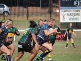 2016 Ladies Round 3 vs Waverly at Campbelltown Sat 16 April_62