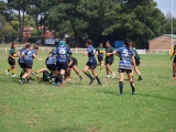 2016 Ladies Round 3 vs Waverly at Campbelltown Sat 16 April_65