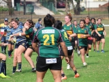 2016 Ladies Round 3 vs Waverly at Campbelltown Sat 16 April_68
