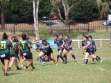 2016 Ladies Round 3 vs Waverly at Campbelltown Sat 16 April_73