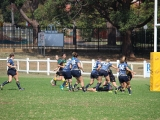 2016 Ladies Round 3 vs Waverly at Campbelltown Sat 16 April_7