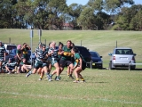 2016_Ladies_R6_Warringah__118