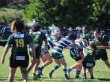 2016_Ladies_R6_Warringah__143