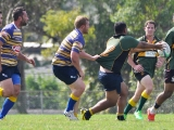 2016 Round 3 vs St Ives_101