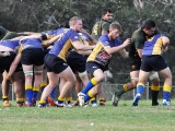 2016 Round 3 vs St Ives_157